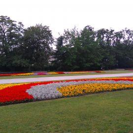 Pomnik Czynu Polaków