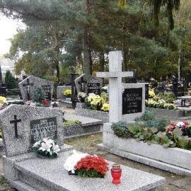 Cmentarz Wielgowo