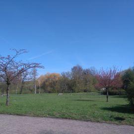 Park Arkoński