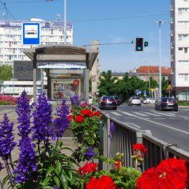 Plac__Zolnierza_donice_02.JPG