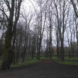 Park Chopina